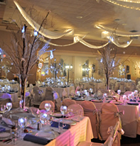 Bat Mitzvah Party, Landerhaven